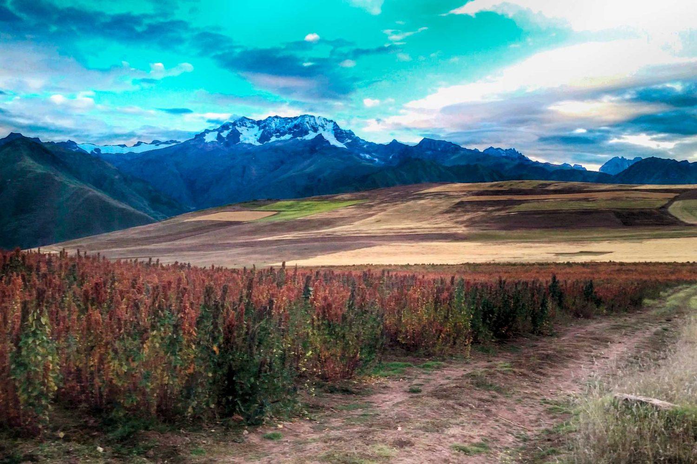 Best sightseeing in Cusco