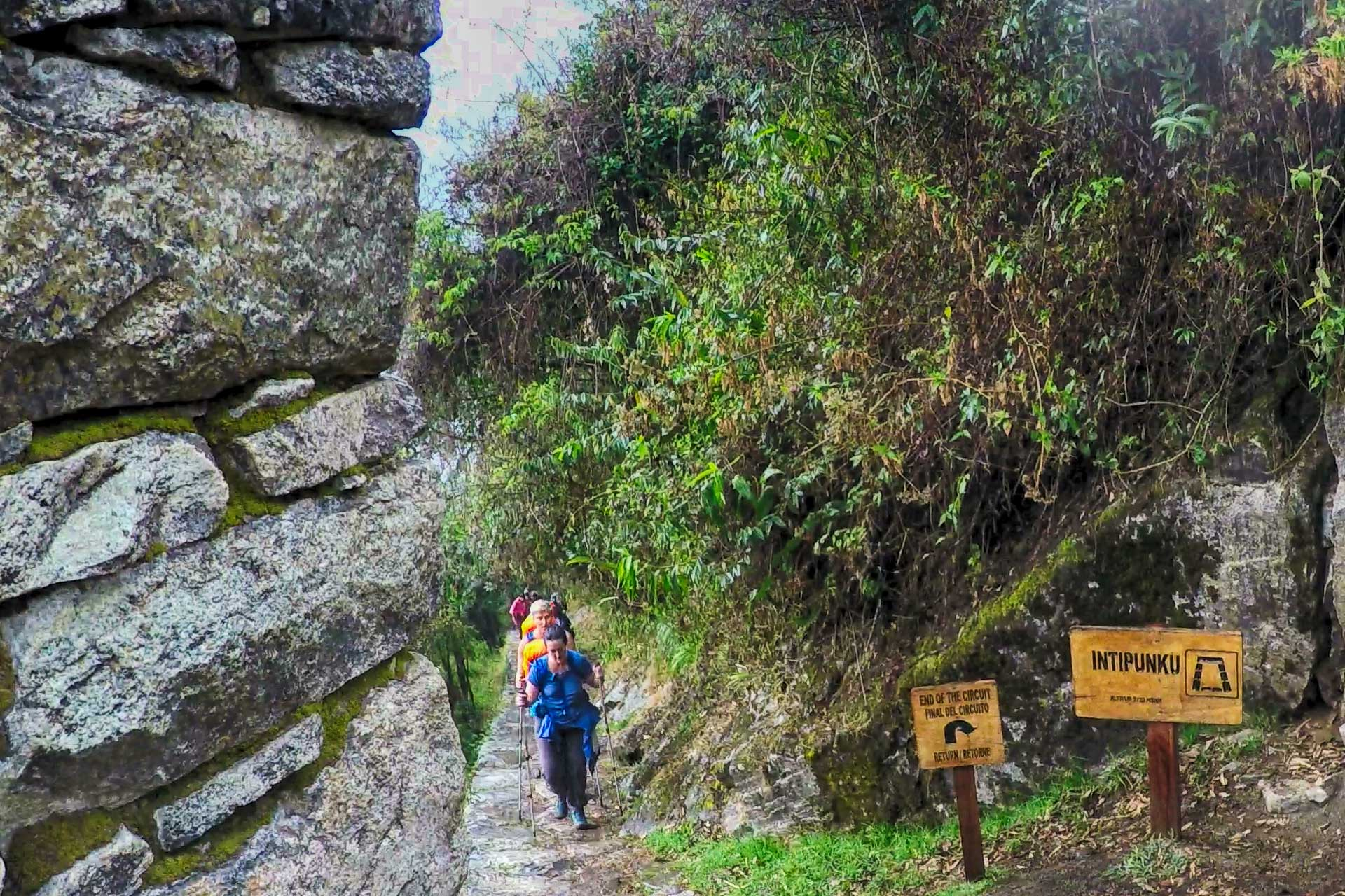 The Best Way to Machu Picchu: Inca Trail, Inka Jungle Tour, Salkantay Trek or Train?