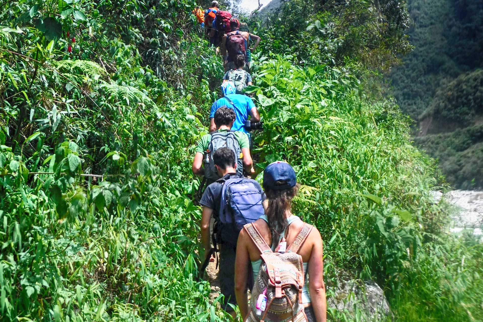 Inka Jungle Tour will take you through the jungle on the way to Machu Picchu travel peru