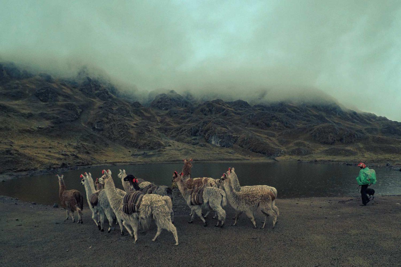 Caminata por el valle de Lares