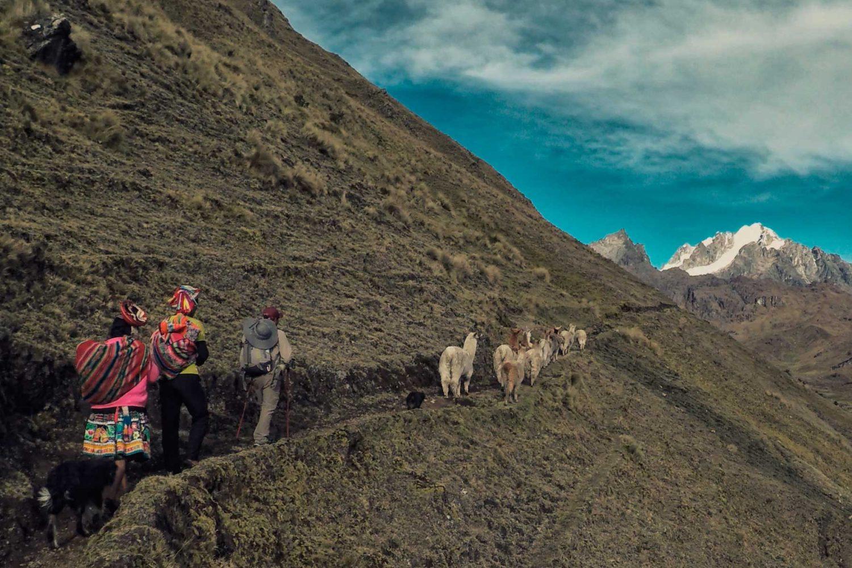 Trekking Tour Lares & Machu Picchu