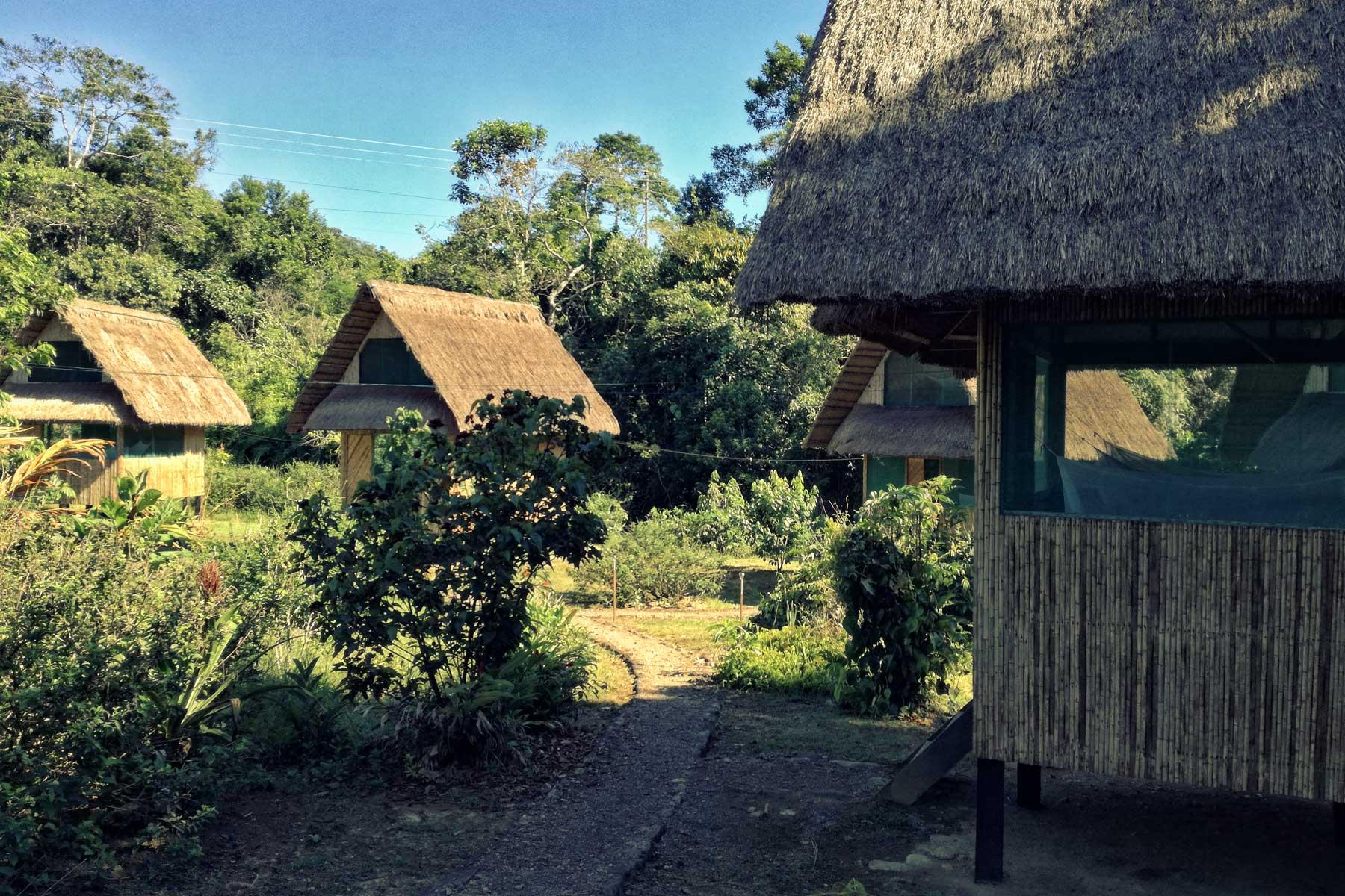Lodge alojamiento selva Manu Perú